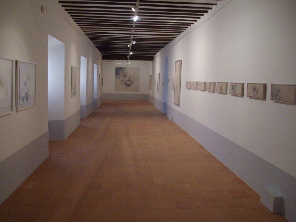 interior museo mula