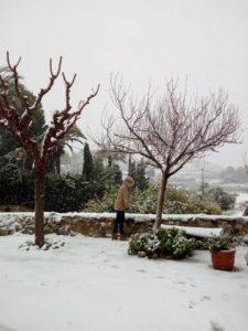 nieve molino2